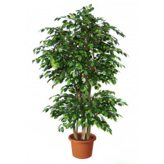 ficus-benjamin-boschetto-pianta-artificiale-h9308
