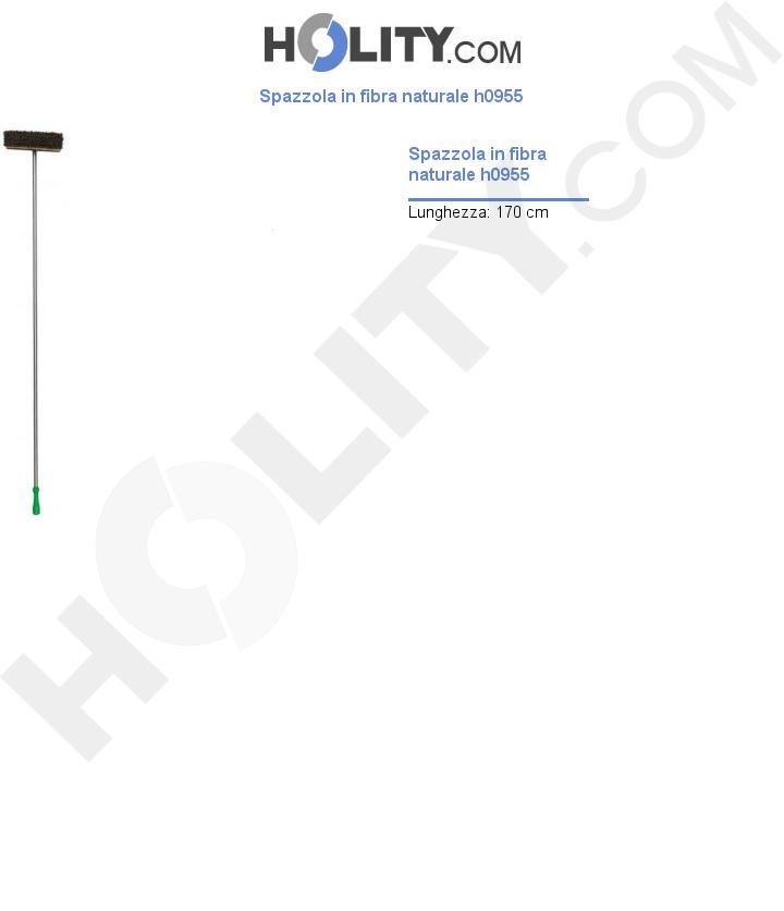 Spazzola in fibra naturale h0955