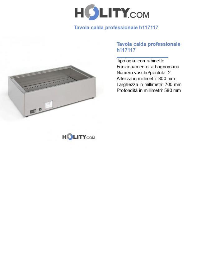 Tavola calda professionale h117117