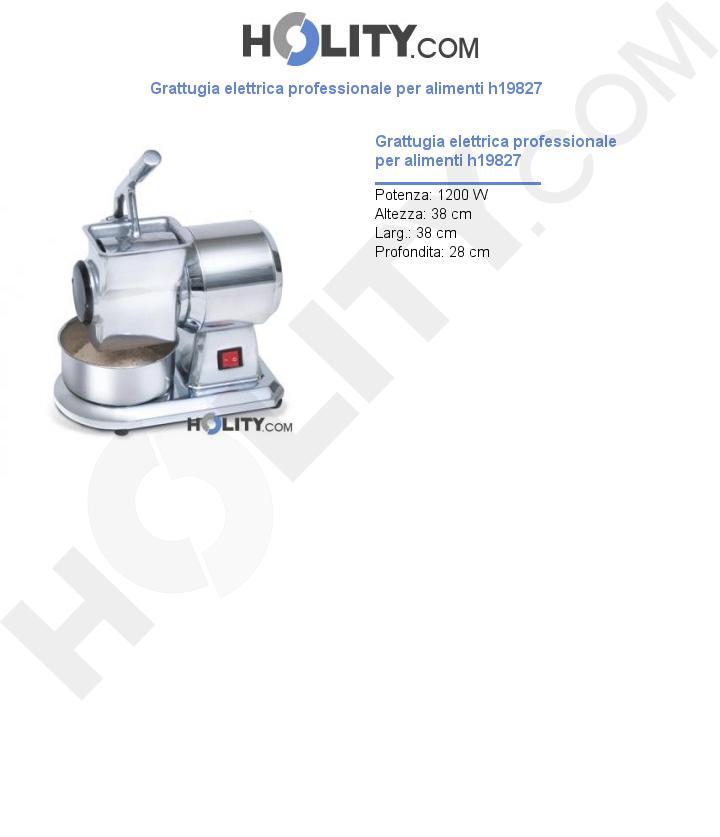 Grattugia elettrica professionale per alimenti h19827