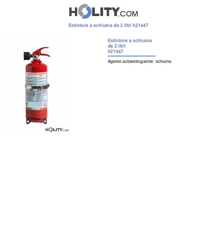 Estintore a schiuma da 2 litri h21447