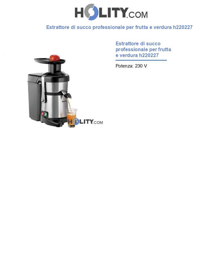 Estrattore di succo professionale per frutta e verdura h220227