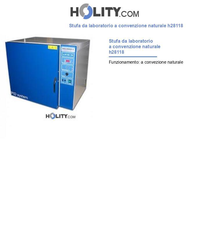 Stufa da laboratorio a convenzione naturale h28118