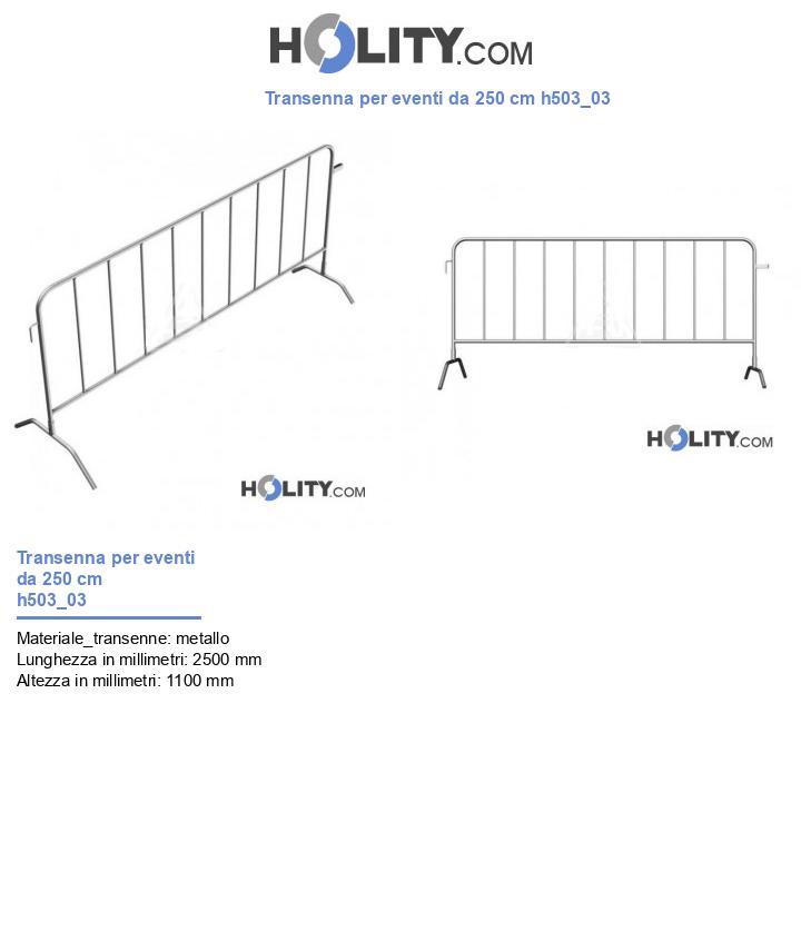Transenna per eventi da 250 cm h503_03