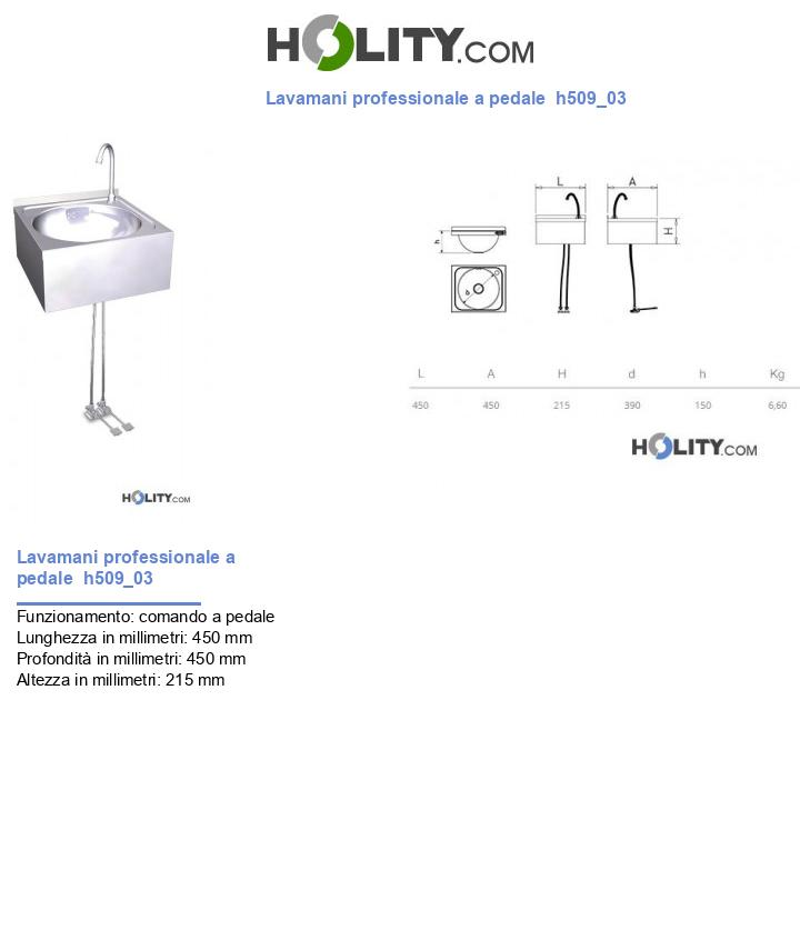 Lavamani professionale a pedale  h509_03