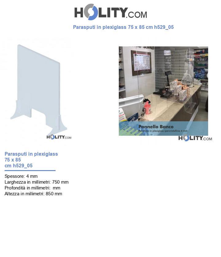 Parasputi in plexiglass 75 x 85 cm h529_05