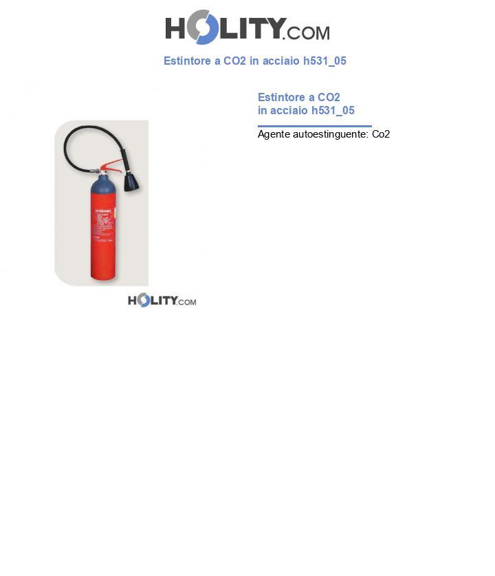 Estintore a CO2 in acciaio h531_05