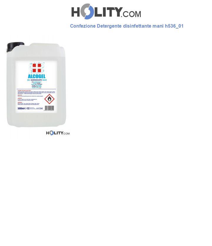 Confezione Detergente disinfettante mani h536_01