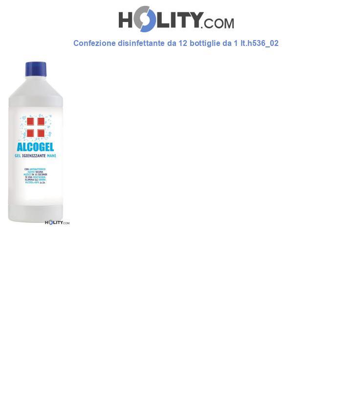 Confezione disinfettante da 12 bottiglie da 1 lt.h536_02