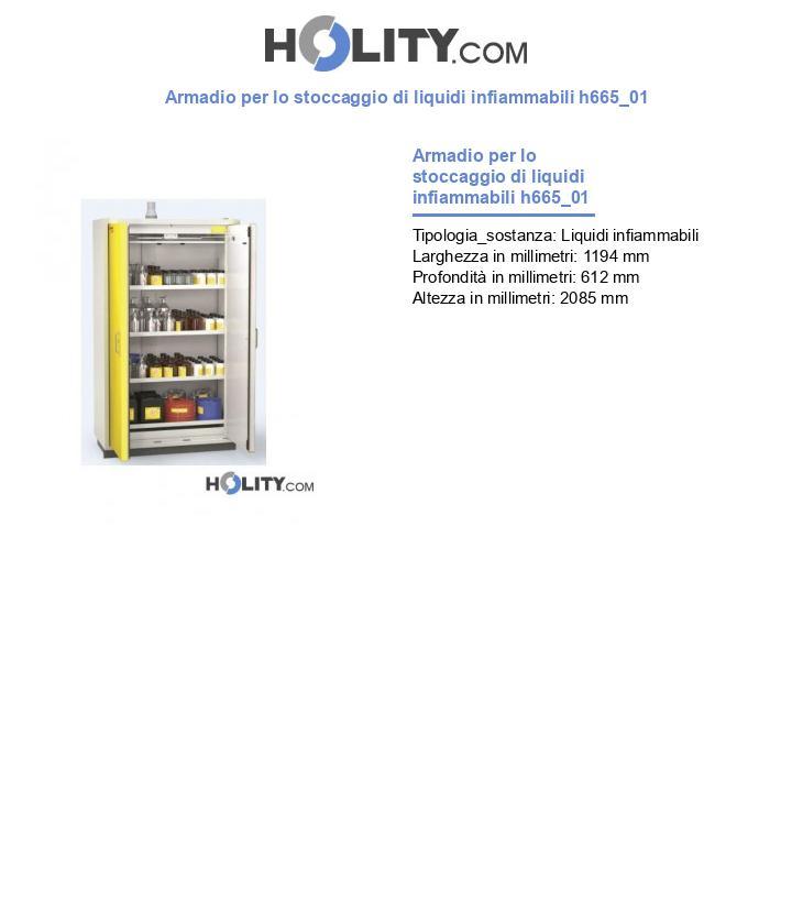 Armadio per lo stoccaggio di liquidi infiammabili h665_01