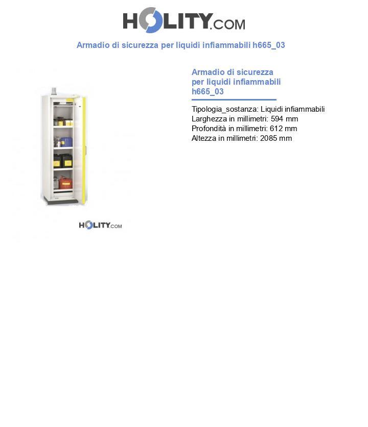 Armadio di sicurezza per liquidi infiammabili h665_03