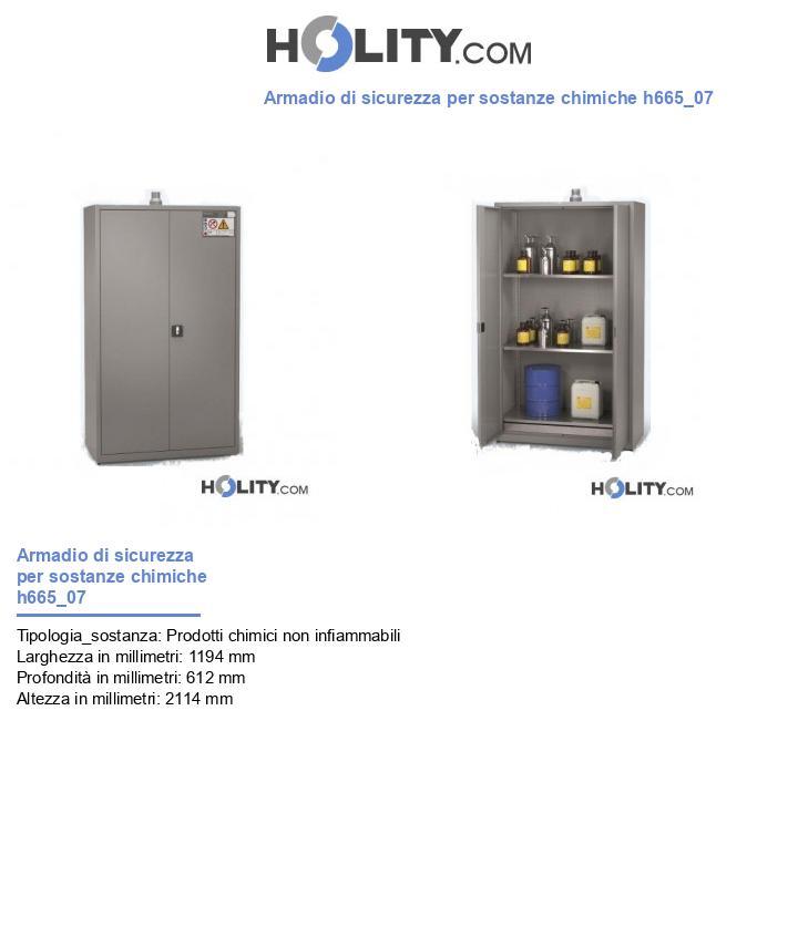 Armadio di sicurezza per sostanze chimiche h665_07